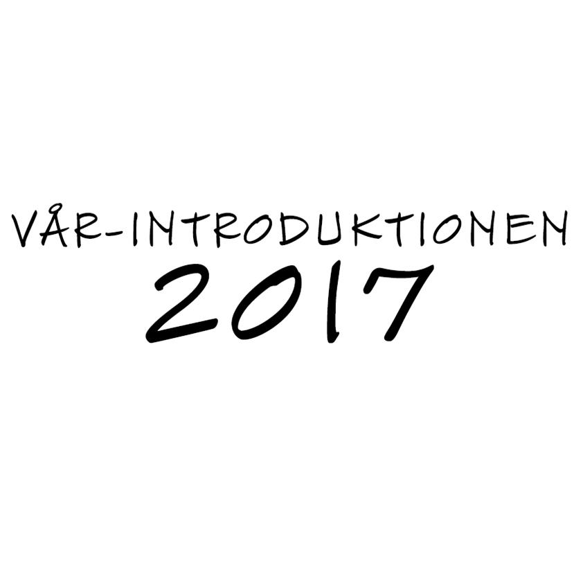 BANNER FB VÅR kopiera